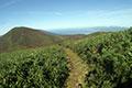 Hokkaido Hiking Tours
